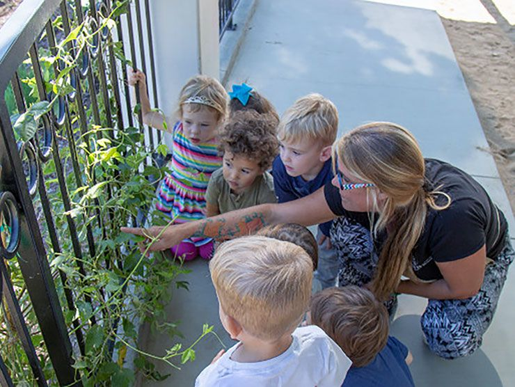 Teacher and group of toddlers observing a plant outside