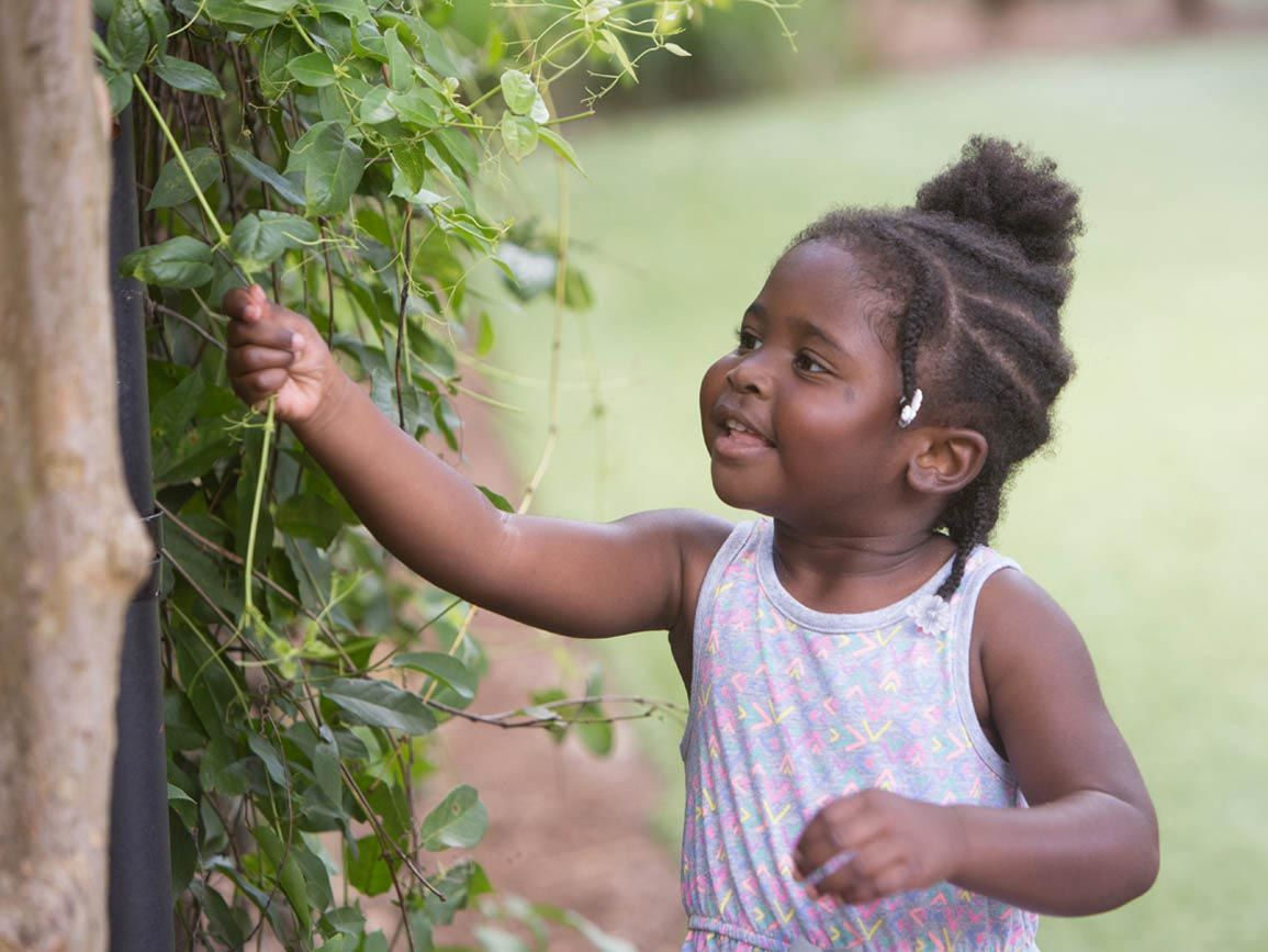 A toddler girl playing with a tree