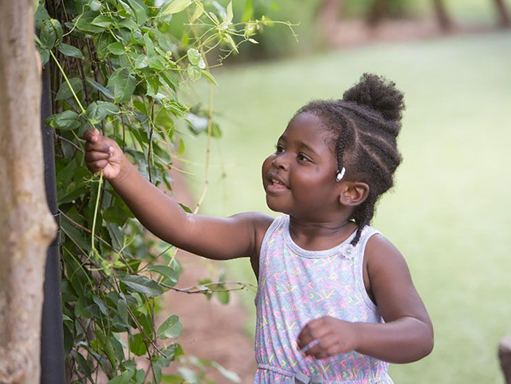Preschool girl admiring a vine outside