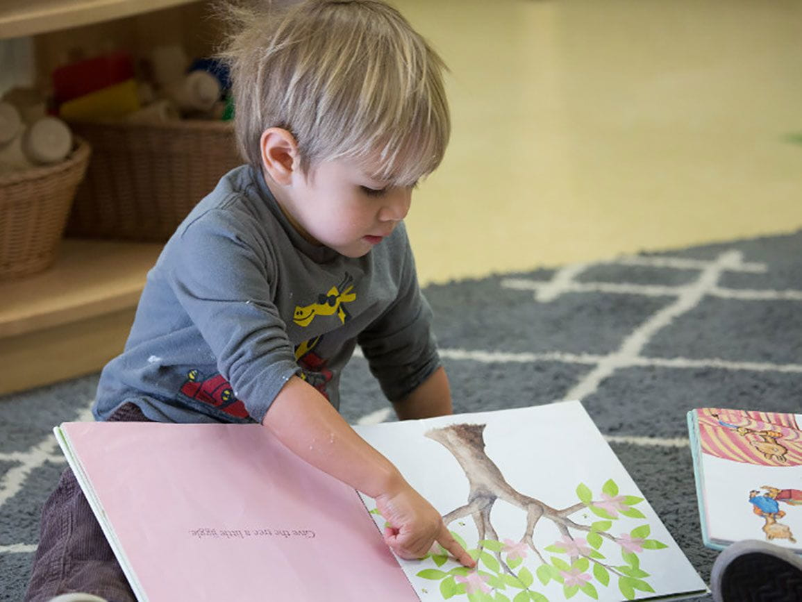 Preschool boy reading a book