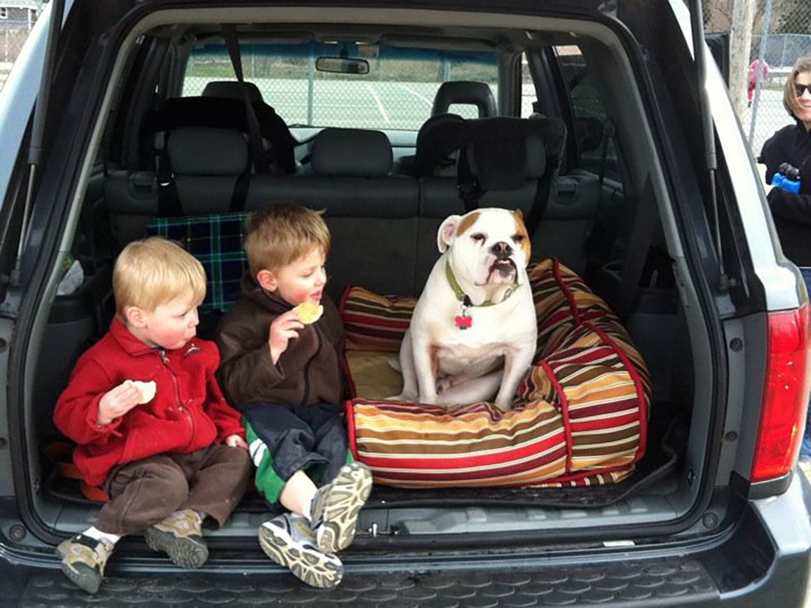 2 brothers sitting with their family dog in the trunk of their car