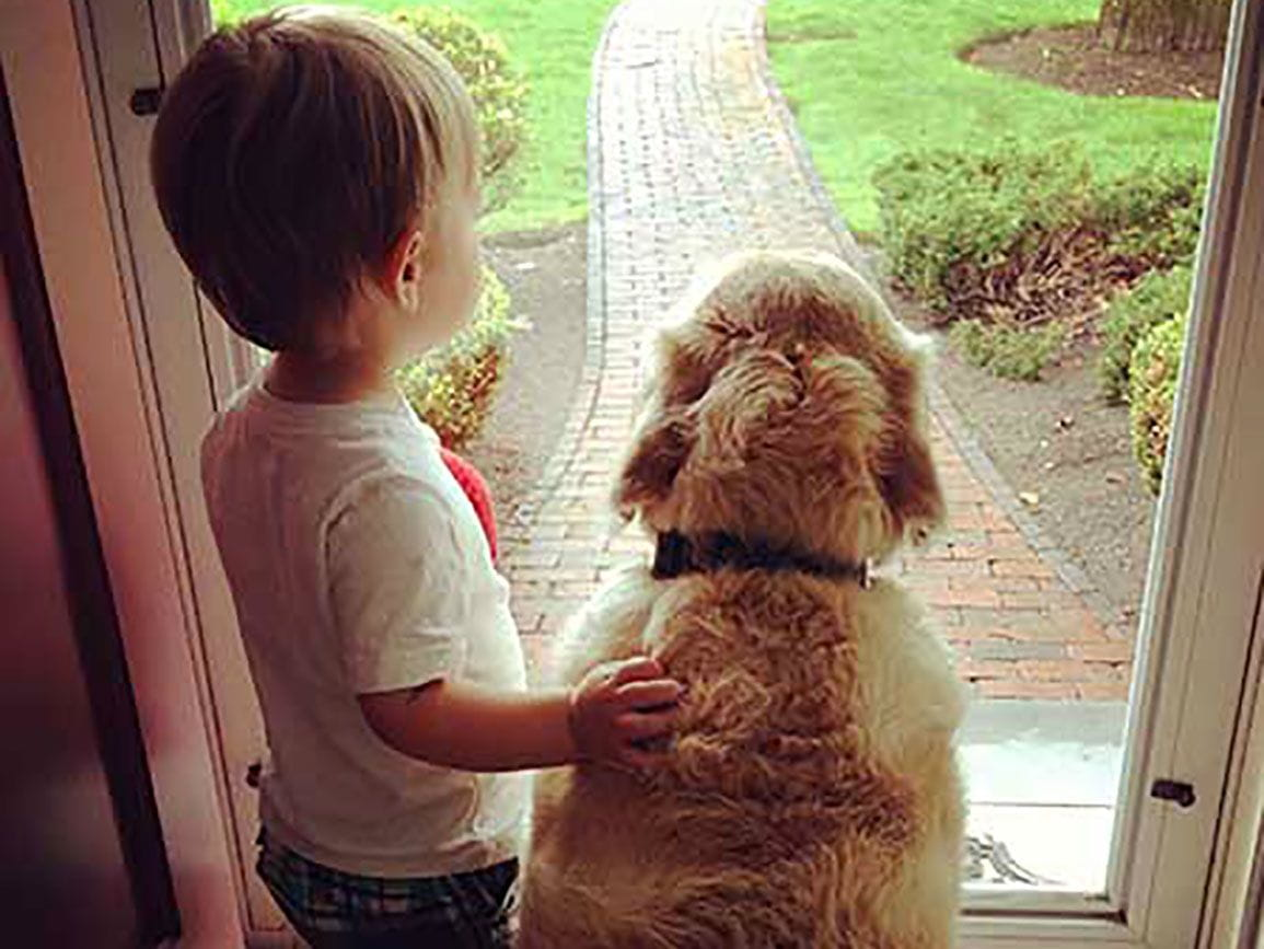 Preschool aged boy standing with his golden retriever at the front door