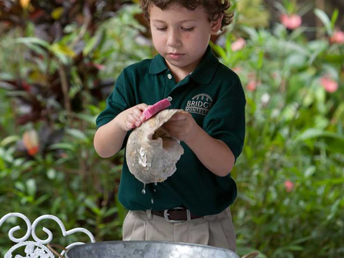 Preschool boy scrubbing a shell
