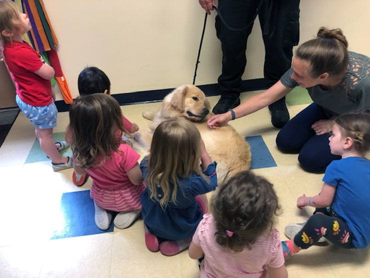 Ben Franklin, therapy dog, visits children at Bright Horizons at Franklin Industrial Park