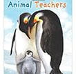 Animal Teachers | Children's Book