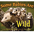 Some Babies are Wild  | Children's Books